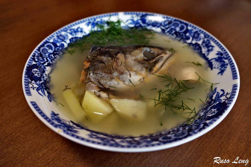 Sopa de pescado rusa